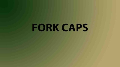 Fork Caps